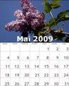 bzmg-05-mai-2009