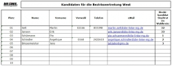 die-linke-liste-bv-west
